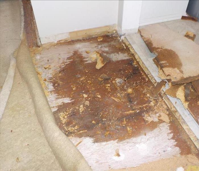 Subfloor Damage