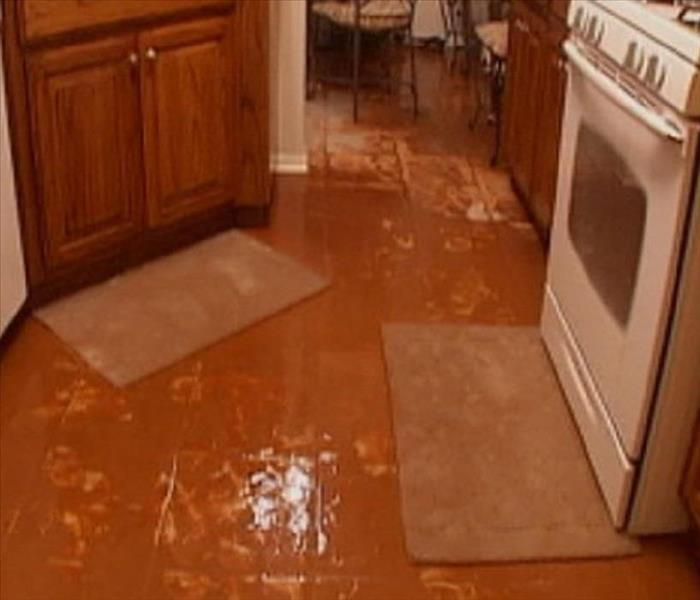 Kitchen Flood in Novi, MI