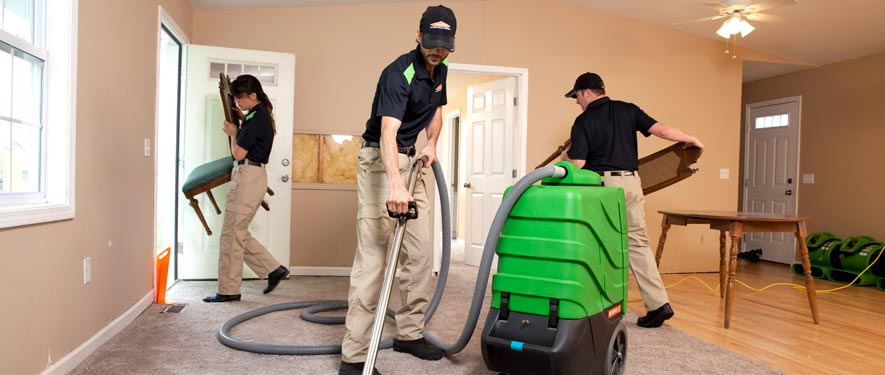 Novi, MI cleaning services